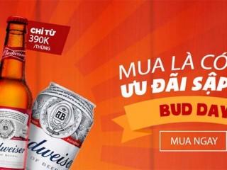 Mã giảm giá Vuabia 100k khi mua thùng Leffe nâu 24 chai giá còn 950k